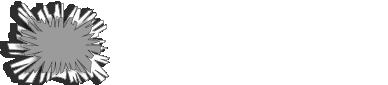 logo offredy blanc